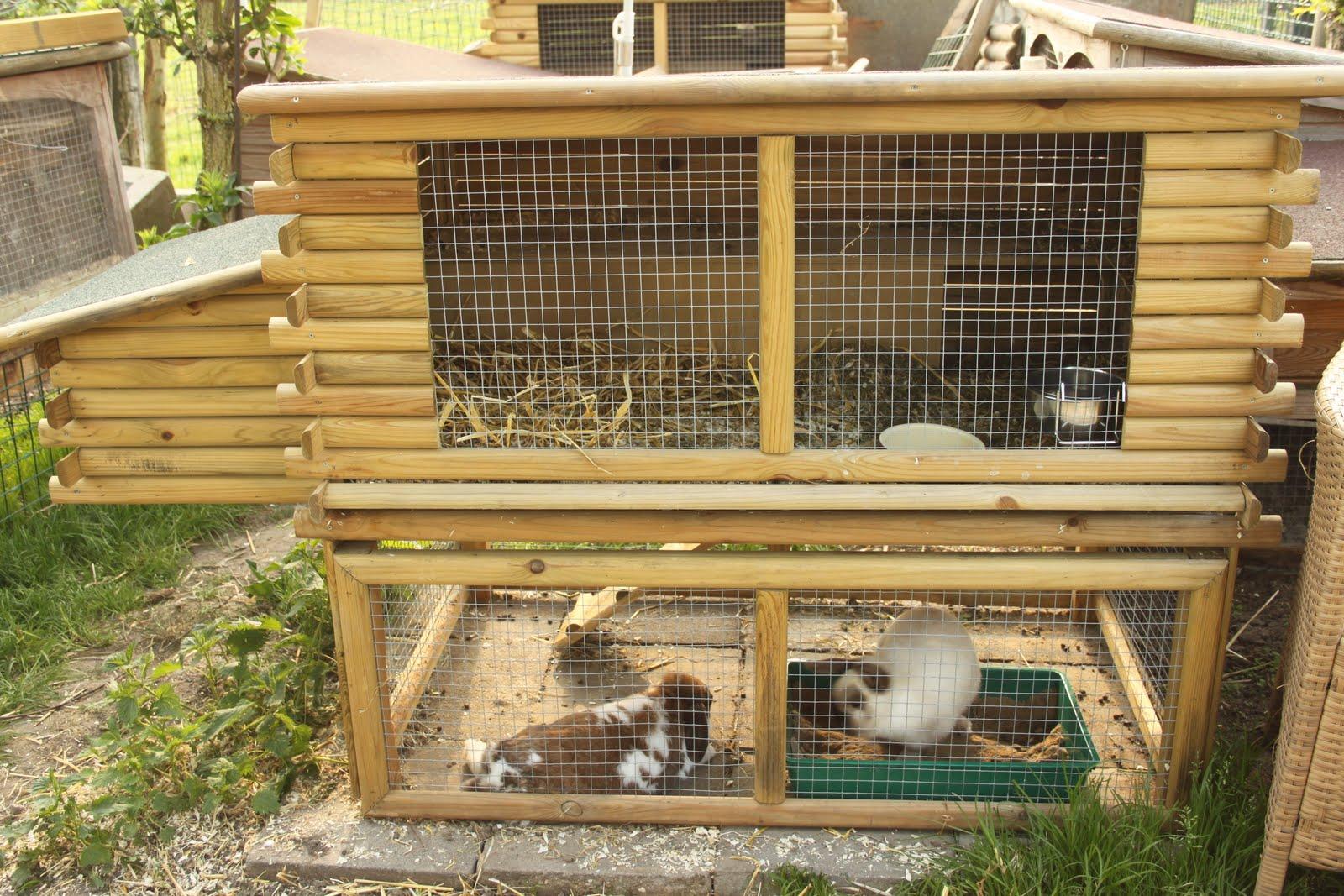 Dubbel hok voor 1 of twee konijnen heppie blog - Een hok ...