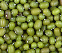khasiat kacang hijau