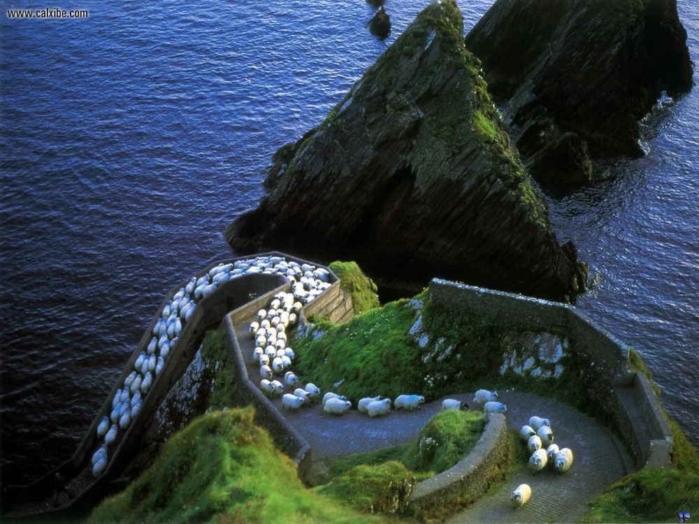 I want to Ireland