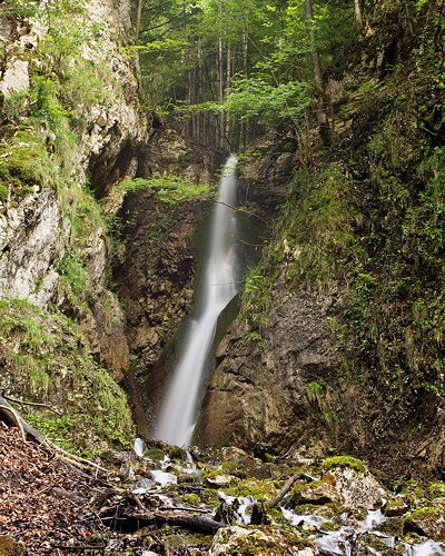 Image of Brion waterfall in Haut Jura Natural Park