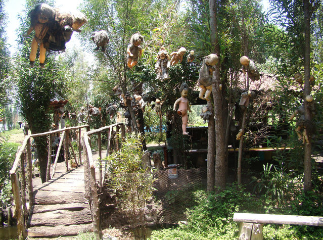 The Island Of The Dolls – A Dark Tourist Attraction In Mexico