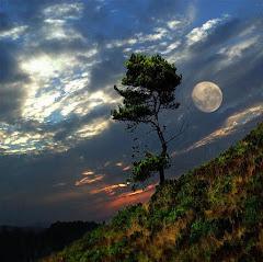 Luna en el monte