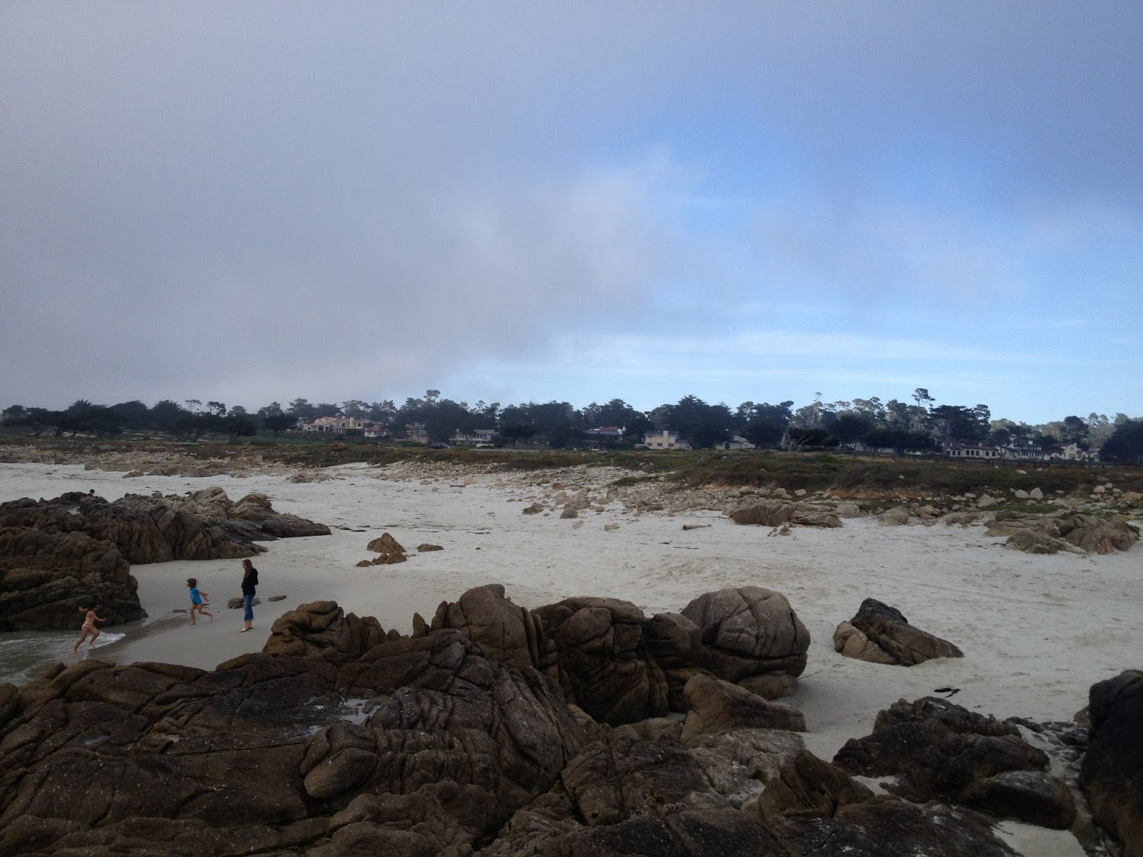 image 1 a view of the rocks exposed along the shore next to 17 mile drive in pebble beach ca