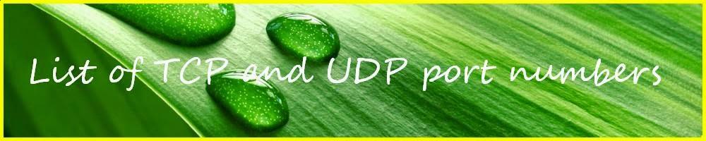 descriptive essay about mother urdu