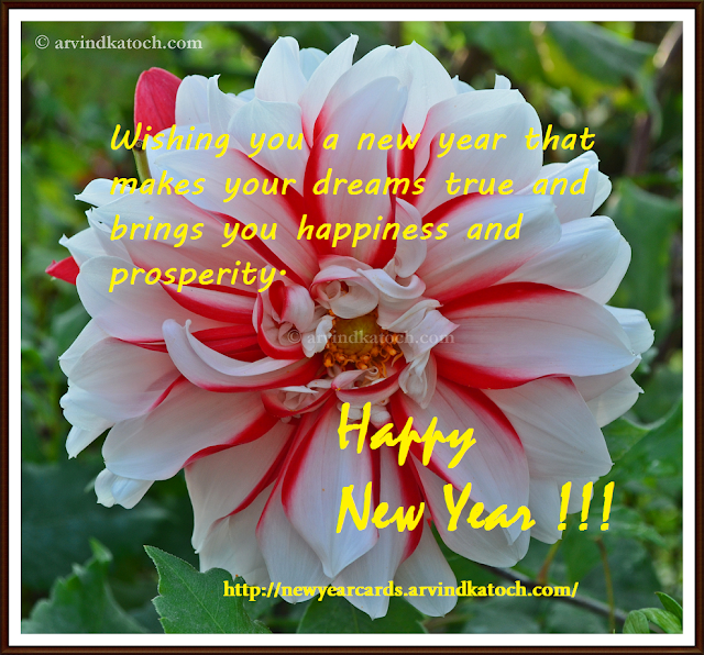 Happines, Prosperity, dreams, New Year Card, Flower Card, HD Card
