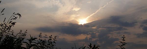 Персеиды - 2008 (Поездка в Звенигородскую Обсерваторию) | Фото 4  title=
