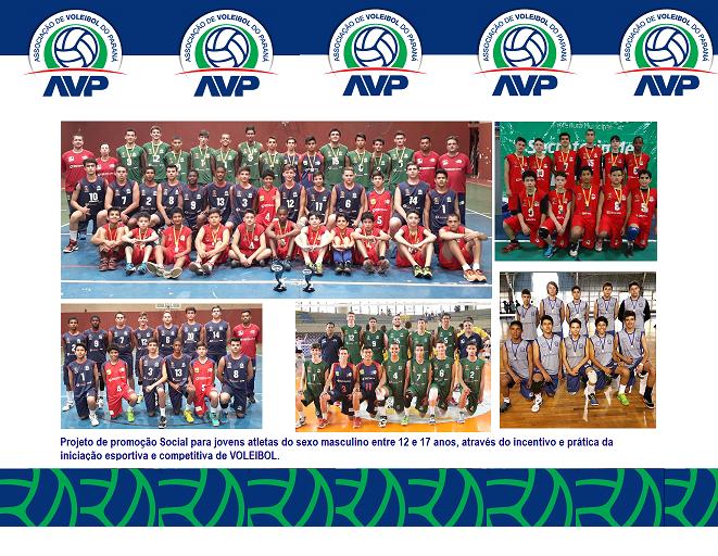 Associação de Voleibol do Paraná