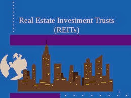Real Estate Investment Trusts (REITs)