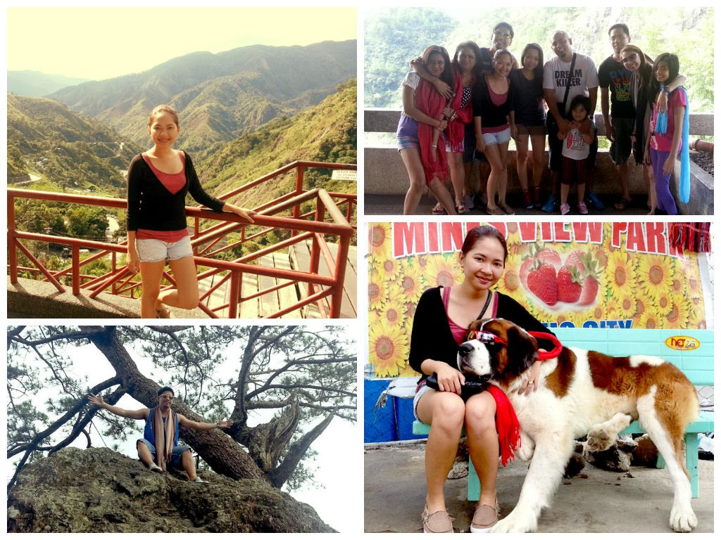 Mines View Park, Mines View dog, where to go in Baguio, cheap hotels in baguio