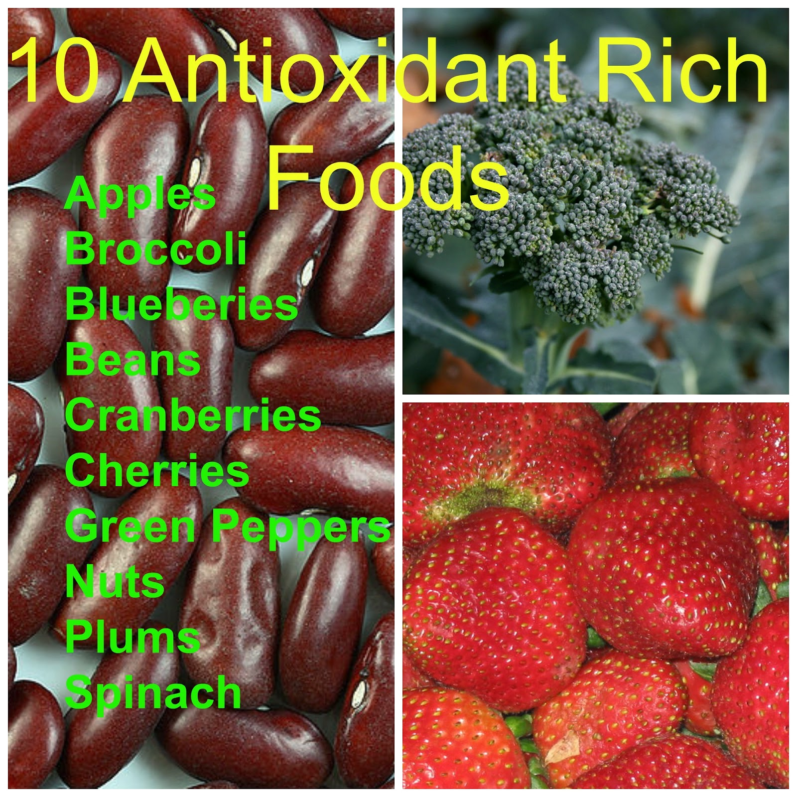 infographic antioxidant rich food