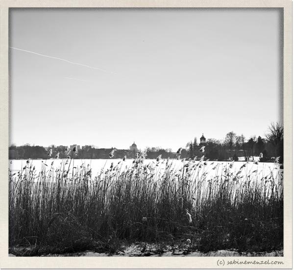 Psynopsis Potsdam Walk