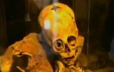 momia de extraterrestre hallada en cusco, perú