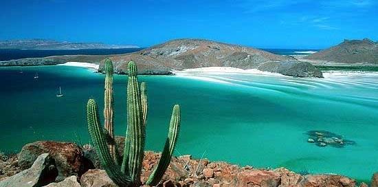 Reserva de la Biósfera del Vizcaíno