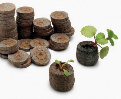 торф, торф для роста растений