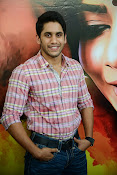 Naga Chaitanya photos-thumbnail-16