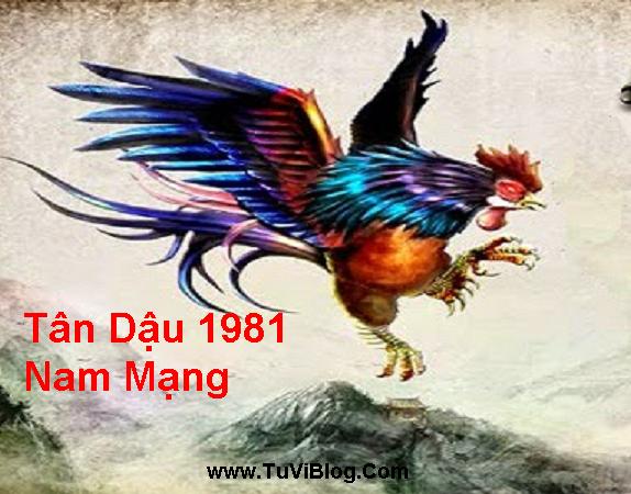 Tan Dau Nam Mang 1981