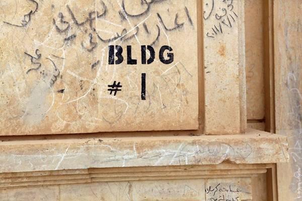 www.DilSeDesi.org