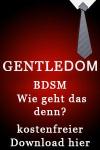 Kostenloses BDSM Handbuch