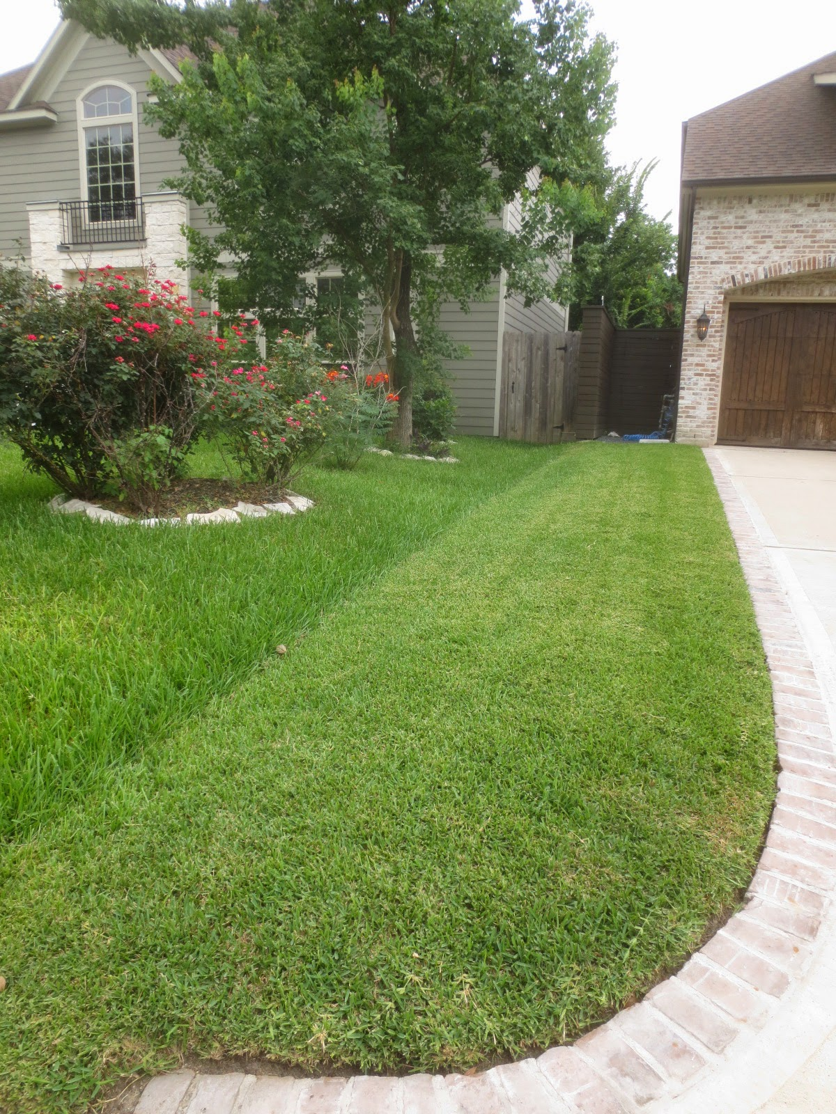 Tropical Texana PREVENTING YARD WARS BOUNDARY IDEAS WHEN