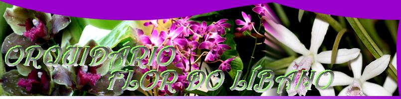 Orquidário Flor do Líbano