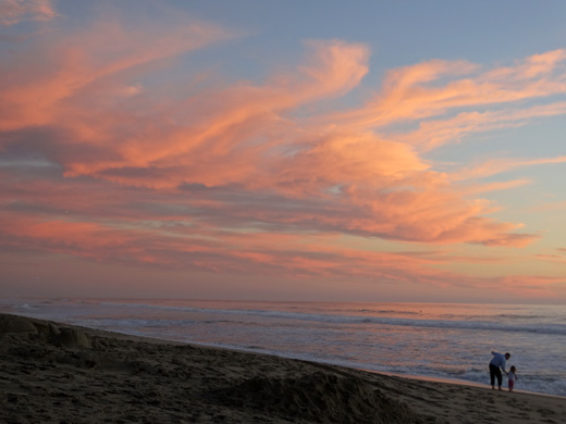 Carlsbad State Beach  - Photo by Stacey Kuhns