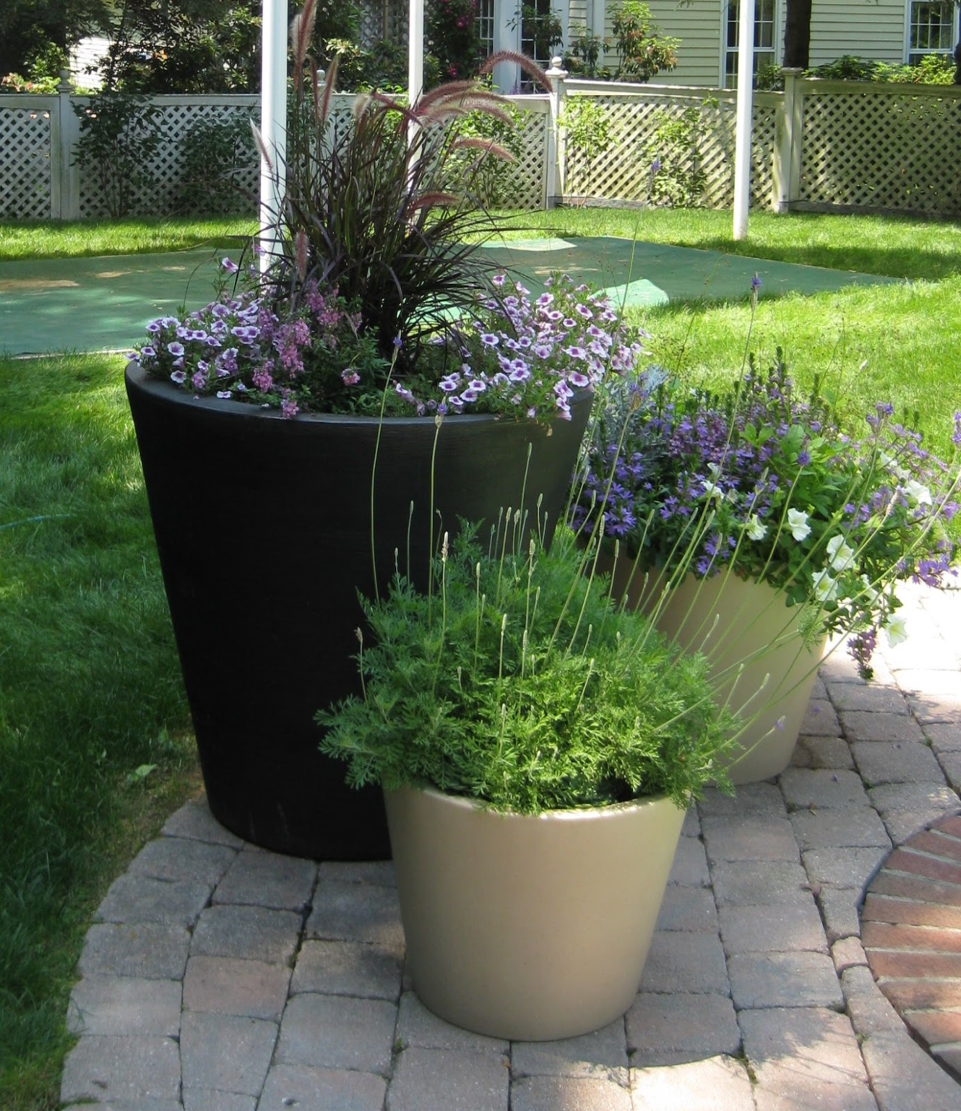Container garden tips the fancy flora for Large flower garden ideas