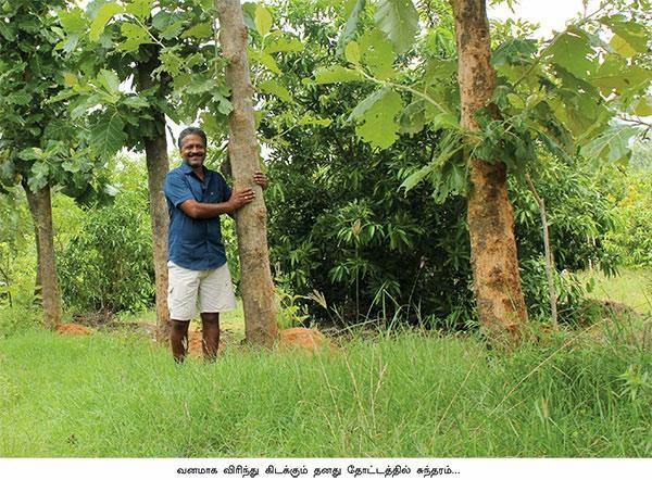 www.thagavalthalam.com Pasumai Nayagan