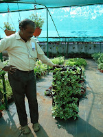 Arun showing vertical gardening system