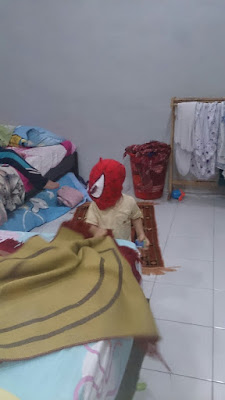 Spiderman In Da'House