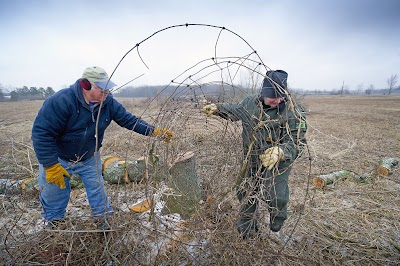 Volunteers make Lake Hudson Recreation Area a better home for pheasants, other wildlife