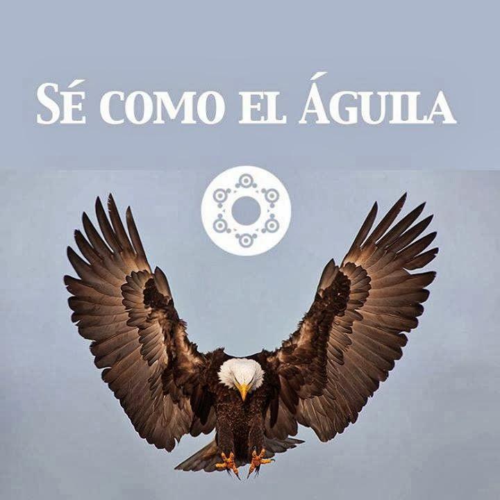 Sé como el águila