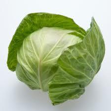 Chữa viêm loét dạ dày bằng bắp cải