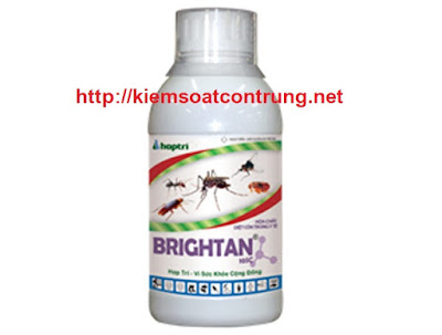 BRIGHTAN-10SC