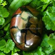 Batu Sisik Naga Makasar - SP827