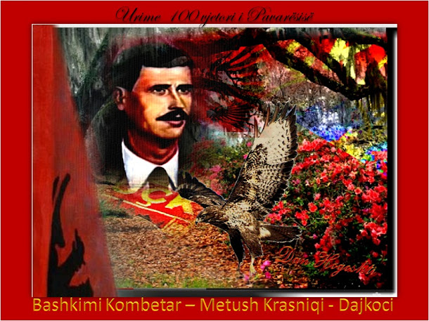 Metush Krasniqi - Bashkimi Kombetar