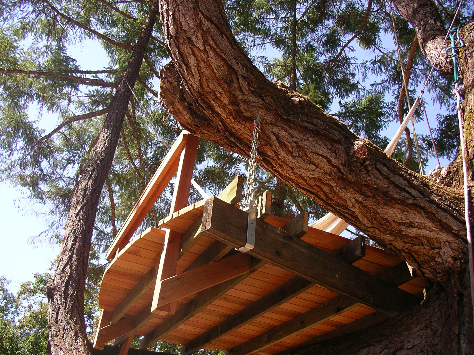 Hanging Tree House Priority Tree Suspended Tree House Deck