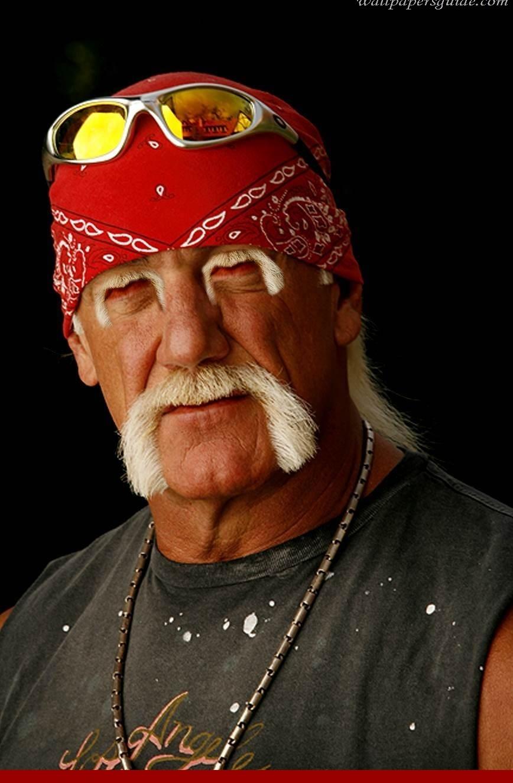 Hulk Hogan Quotes Quotesgram
