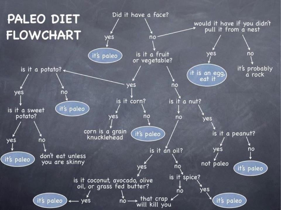 paleo diet flow chart
