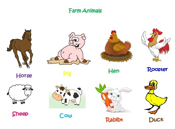 Farm Animals For Kids ENGLISH KIDS FU...