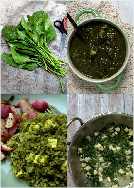 palak paneer recipes