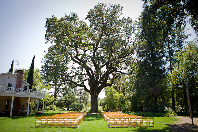 sunny sonoma vineyard wedding via oh lovely day | photo by Hendrickson Photography