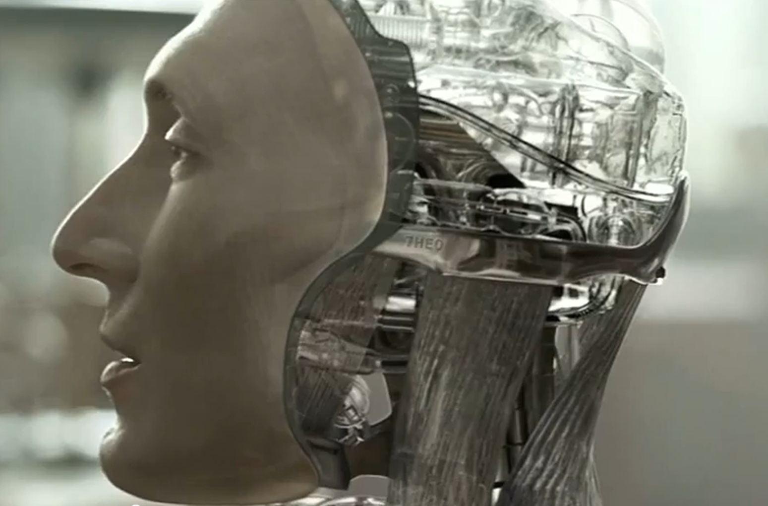 Domesro Immortal Domestic Robots