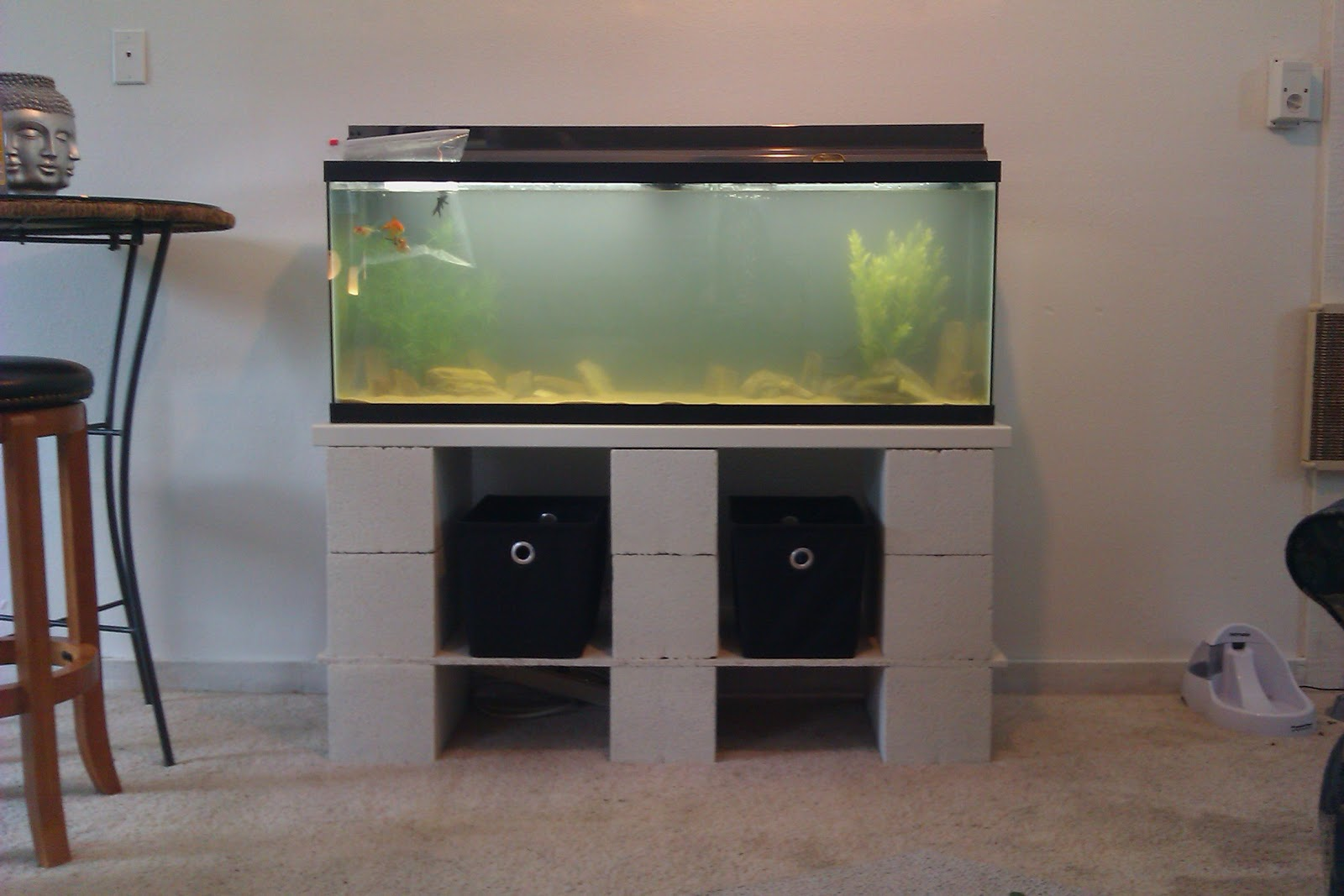 Fish tank with stand - Pink Aspen Projects