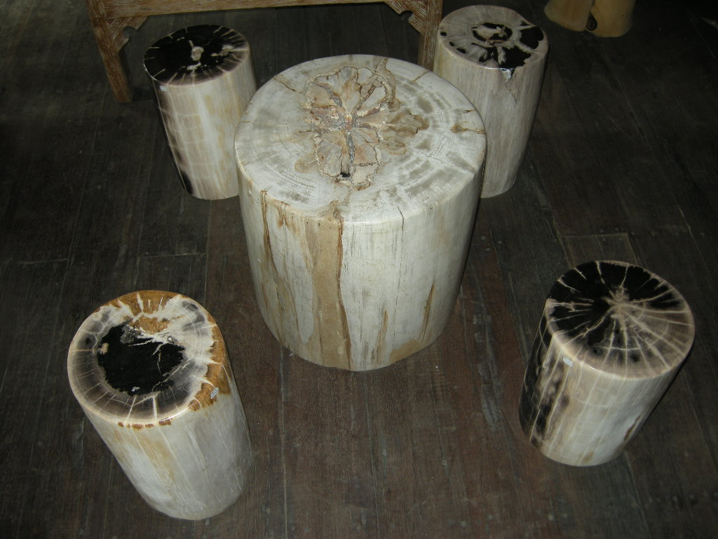 Petrified wood tables for sale indogemstone for Petrified wood furniture for sale