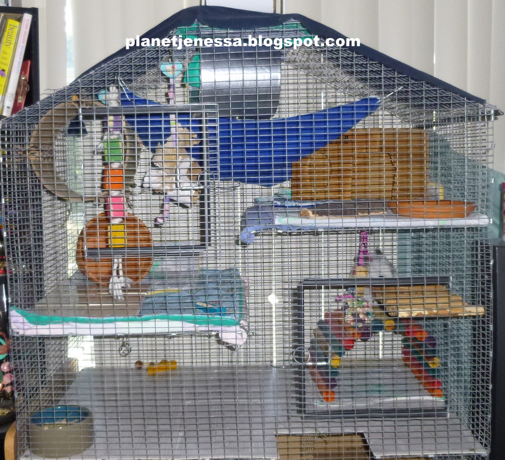 Homemade Chinchilla Cages Plans Homemade Chinchilla Cage Plans