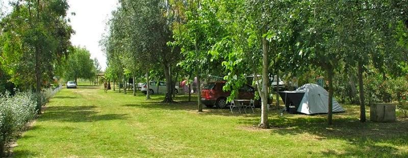Parcelas del Camping Ampolla Playa