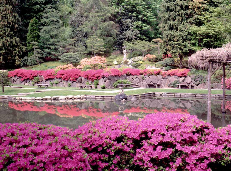 http://2.bp.blogspot.com/-6PZVyZL8i_0/TeNp2iORzxI/AAAAAAAACws/3Wetk2hb3ao/s1600/japanese-garden1.jpg