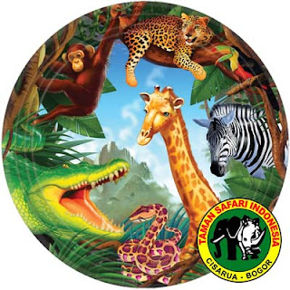 Job Vacancy Taman Safari Indonesia