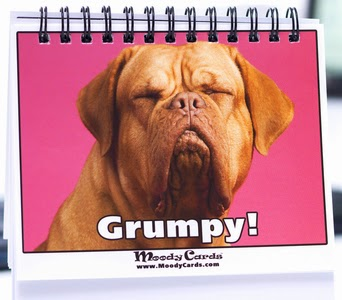 Don't be Grumpy! - Mody Cards
