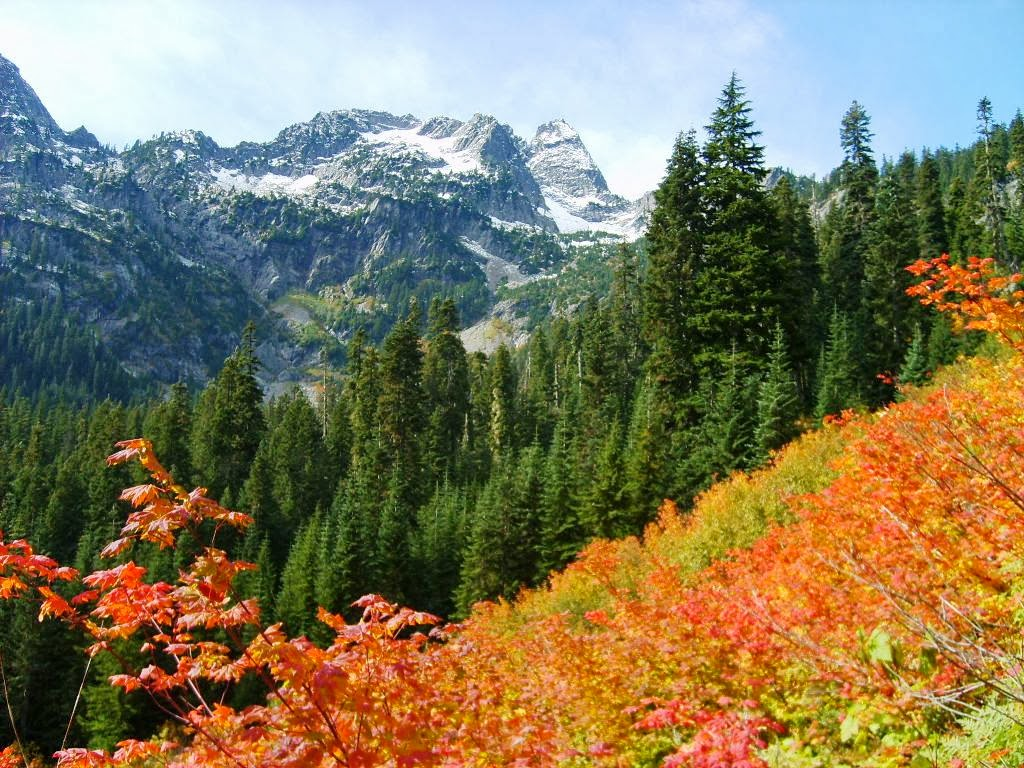 Pacific Northwest Seasons: Fall Colors in the Pacific Northwest